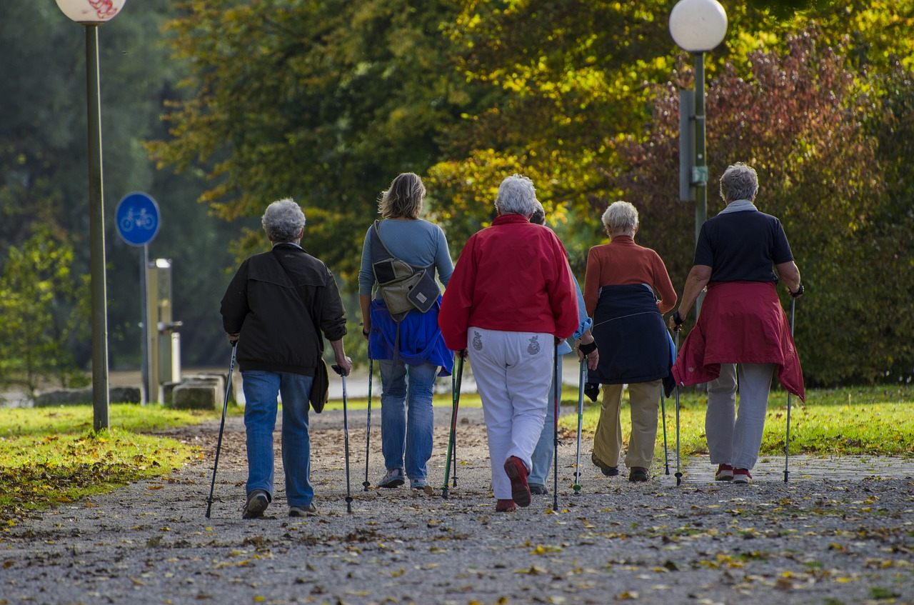 nordic-walking-1814784_1280-sport-des-plus-de-65-ans